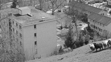 Erweiterung Mehrfamilienhaus